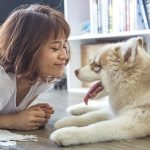 Pets emerging as a growth industry in Asia
