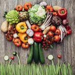 Plant-based protein - An alternative approach to food